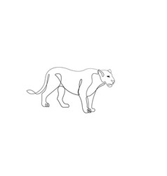 Lioness one line drawing vector