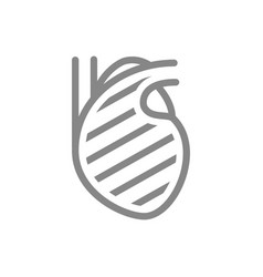 sore heart line icon circulatory system illness vector image