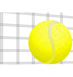 Tennis ball and net vector