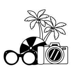 vacations ball sunglasses camera palms vector image