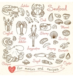 Set drawings of seafood for design menus recipes vector image vector image