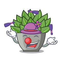 Juggling cartoon echeveria cactus in cactus garden vector