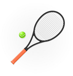 racket and ball for playing tennis vector image