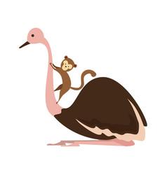 wild ostrich bird character vector image