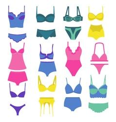 beautiful fashion lingerie elements vector image