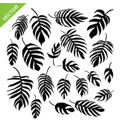 monstera leaves silhouettes vector image vector image