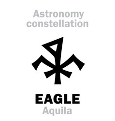 Astrology eagle aquila constellation vector