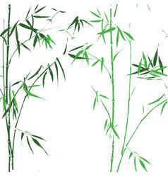 bamboo oirental asian green seamless pattern vector image