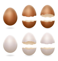Broken eggs cracked open easter eggshell design 3d vector