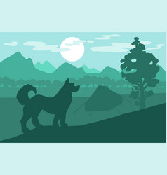 dog in the camping vector image