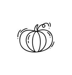 Isolated monoline contour pumpkin on white vector