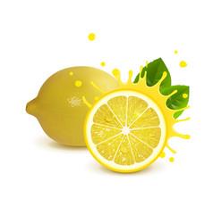 juicy whole lemon and half lemon vector image