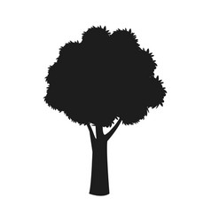 silhouette tree trunk stem branching image vector image