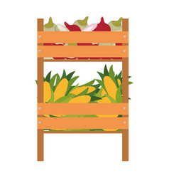 wooden box with vegetables isolated icon vector image