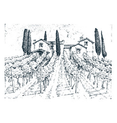 rustic vineyard rural landscape with houses vector image vector image