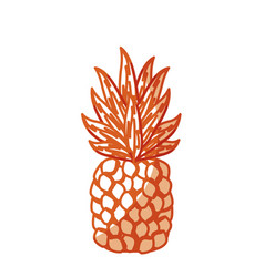 silhouette delicious pineapple tropic fruits vector image