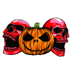 halloween skull pumpkin isolation vector image
