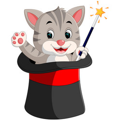 kitten in a magician hat cartoon vector image