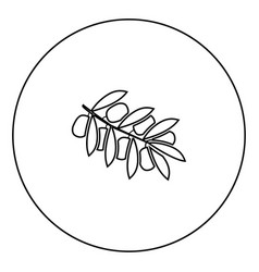 olive branch black icon in circle outline vector image