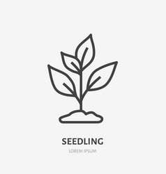 plant sprout flat line icon thin sign of vector image