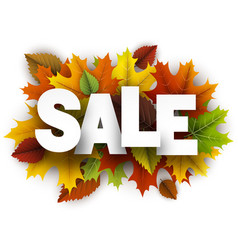 sale background with colorful leaves vector image