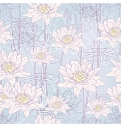 Water lily flowers vector