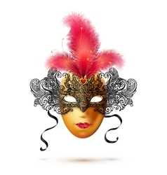 Golden and black ornate carnival mask with bright vector image vector image