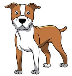 American staffordshire cartoon dog vector