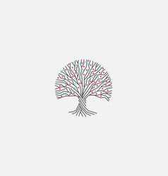 bloom tree isolated logo blossom tree vector image