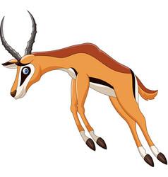 Cartoon antelope jumping vector