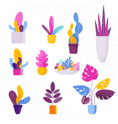 collection of decorative exotic tropical vector image