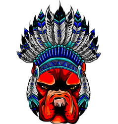 head dog with traditional indian hat vector image