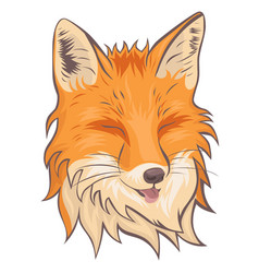 Head fox isolate on a white background vector