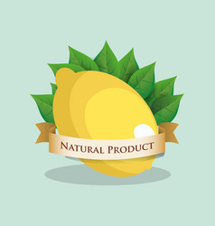 Lemon natural product leaves vector