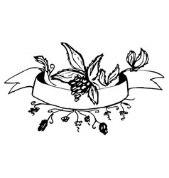 sketch decoration ribbon with branch berry vector image vector image