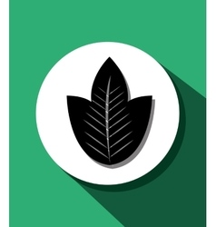 Leaf and leaves ecology graphic vector image vector image