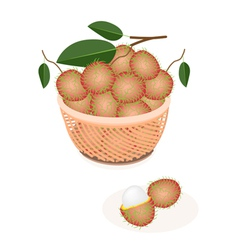 A Brown Basket of Fresh Ripe and Juicy Rambutans vector image vector image