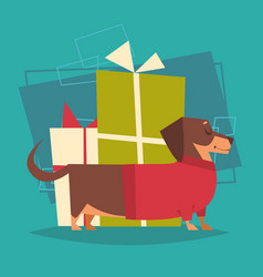badger dog with gifts stack box wearing winter vector image