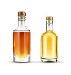 Bottles set tequila whiskey bourbon drinks vector