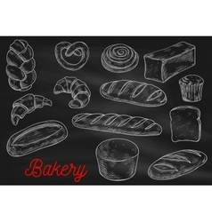 Bread sorts and bakery products sketch vector image