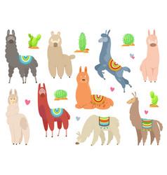 Cute llamas and alpacas funny smiling animals vector