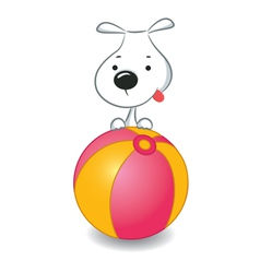 Dog Ball vector