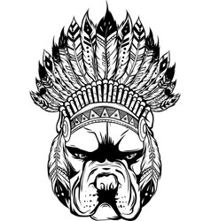 draw in black and white pitbull dog head with vector image