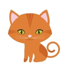 orange small cat sitting green eyes vector image