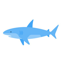 flat style of white shark vector image vector image