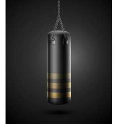 Punching bag vector image vector image