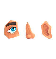 body parts with eye nose and ear set vector image