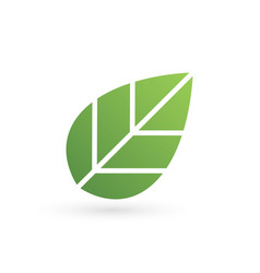 eco tree leaf logo template isolated on white vector image