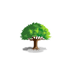 green creative oak tree logo vector image