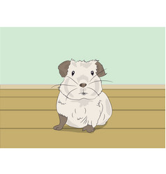 Guinea pig sitting in a room vector
